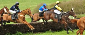 Dingley Races