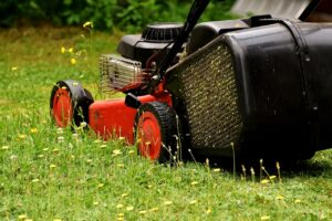 lawn mower 2430725 1280 300x200