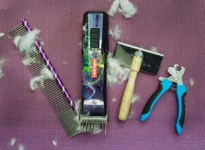 dog grooming tools 300x220