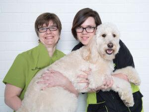grrs2purrs staff and dog 300x226